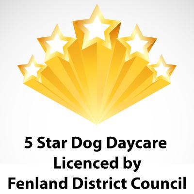fivestar licence